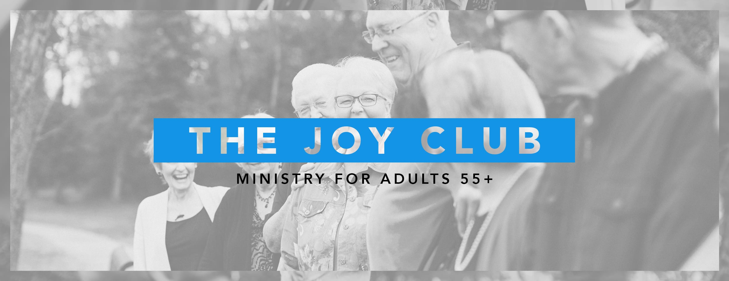 The Joy Club